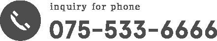 075-533-6666